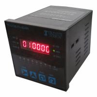 digital dual display multifunction timer TT-DT96-F46DSR